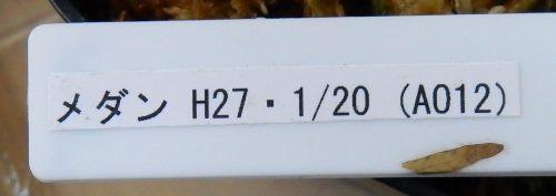 画像3: Ao12